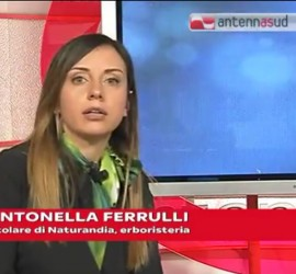 antonellaferrulli_antennasud3-5